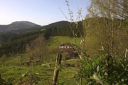 Done Jakue bidea Itsasotik: Urteaga