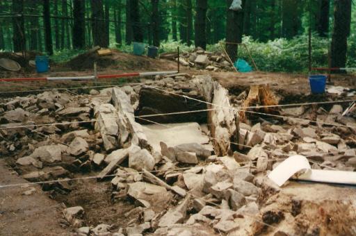 Itsasoko Mandubizelaia trikuharriaren indusketa lanak (1998-2000)