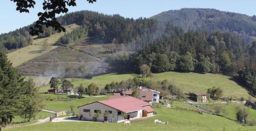 Entorno de Mandubia en Itsaso